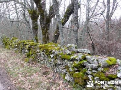 Somosierra - Camino a Montejo;gente senderista;clubs en madrid